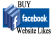 give USA 6000 Real Facebook Websites Likes Real and Permanent Not For Fanpages