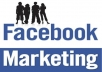 promote your website or any URL to my active and responsive  30 million Facebook Group Members and 15000 Facebook Fans only