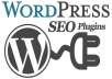 install WordPress & configure essential SEO plugins to improve your PageRank.