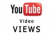 Offer you over 4000 views to your youtube video