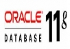 create your database in Oracle 11g & will write or fix your SQL Query or scripts