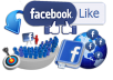 give you REAL Facebook Likes