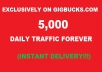 Guarantee You 5,000 Daily TRAFFIC Forever
