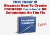 Show You On How You Can Make 400% ROI On Your Campaign With Facebook Ads Report