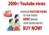 Provide you SAFE 2,000 YouTube REAL HUMAN Views Buy 4 And Get 1 FREE to your video