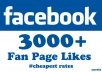 give you 3000 Facebook Fan Page Likes