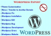 fix, install and customize your wordpress & theme