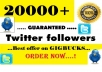 add 20000+ TWITTER followers Guaranteed