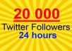 send you 20 000 Twitter Followers
