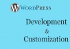 wordpress development and customization