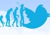 provide twitter account loaded 150 followers within 24hrs