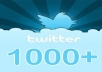 give you 1000 followers twitter profile