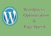 wordpress perfomance optimization