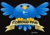 Give You 3000-4000  QualityTwitter Followers Without any Robotic Software