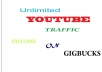 drive Unlimited YOUTUBE traffic to your video
