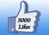 get you 5000 Likes to your page on Facebook