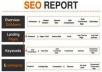 Create full seo report about your website