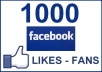 get you 1000 facebook fans or 1000 twitter followers delivered to your fanpage without administration rights just order me once and see