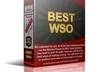give you Highly rated 20 best WSO packages on online Businesses