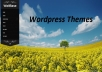 give you 5 premium wordpress themes