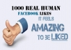Give You 1000 Real human Facebook Page Likes