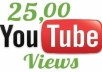 deliver 2500+ youtube views to your video