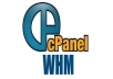 do unmetered cpanel hosting for 1 year