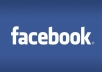 deliver 100+ real Facebook Website Likes