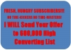 Send Your Offer to 600,000 High Converting Fresh,Hungry Subscribers List