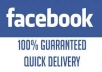 provide you 1,000 facebook followers subscribers fanpage likes