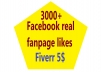 give 3000+ real permanent facebook non-drop likes(worldwide)
