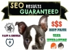 boost Your SEO, Search Rankings, Traffic, Guaranteed