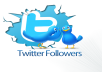 provide top quality 5000 twitter followers never DROPPED
