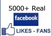 Send you 5000 REAL Facebook Fan Page Likes