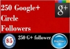 provide 250 Google followers