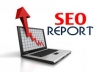 create DETAILED SEO REPORTS