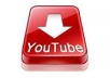 add 100 views on any video on youtube in 2 business days