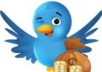 provide 6500 Permanent twitter follower with guarantee