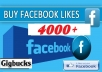 add 4000 Real Active Non Drop Permanent LIKES for Facebook Fan page