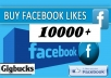 add 10000 Real Active Non Drop Permanent LIKES for Facebook Fan page