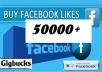 add 50000 Real Active Non Drop Permanent LIKES for Facebook Fan page