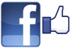 give you 1000+ Facebook Photo/Video/PhotoVotes or Fanpage Likes (Fans) in a day or 2