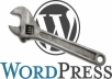 customize wordpress, edit theme, install WP, fix any WP issue