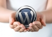 solve 2 Issues of Your Wordpress Website