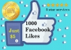 give 1000 Real Facebook Likes within 24 hrs