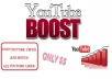 give you 1000 youtube views and a bonus of 100 video likes