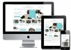 provide you 500 premium wordpress responsive themes