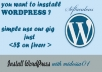 install Wordpress for you with theme