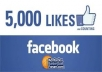 add 5000 Facebook Fan Page Likes To Improve your Social media Signals and SEO