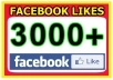 give you real 3,000 Facebook Likes